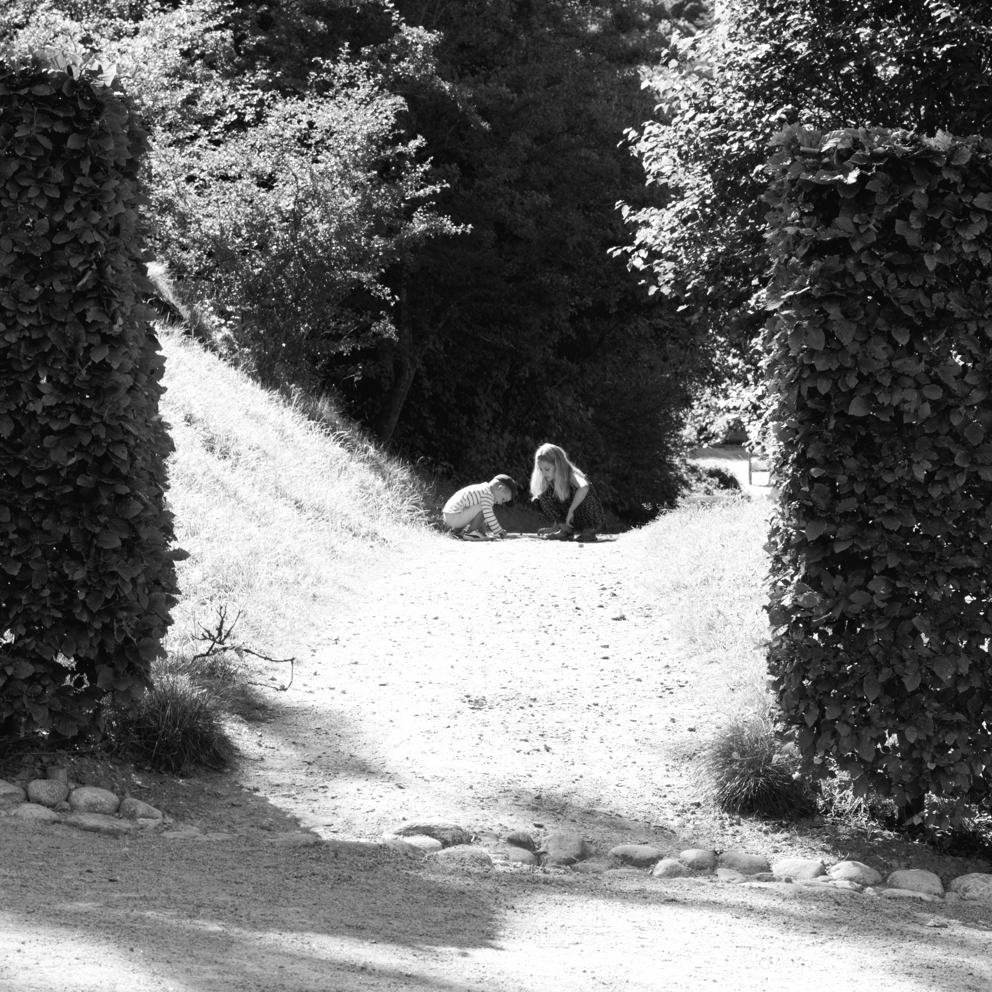 A hole in the hedge at Gunnebo (Mölndal, Sweden) with Leica M Monochrom (Leica Macro-Elmar-M 90mm f/4) by Magnus L Andersson (photography.anderssoneklund.se) at 2013-08-25 11:11:17
